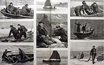 Antique Print of Conger Fishing