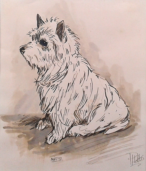 West Highland Terrier picture by Hobbs