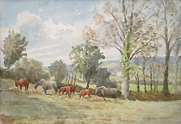M. Amber Kingwell - Ponies and Calves