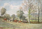 Mabel Amber Kingwell - Ponies and Calves