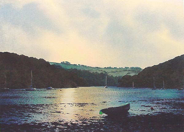 Noss on the River Dart by Mark Gibbons