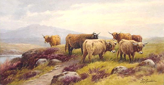 Highland Cattle on Dartmoor - Painting by Tom Rowden