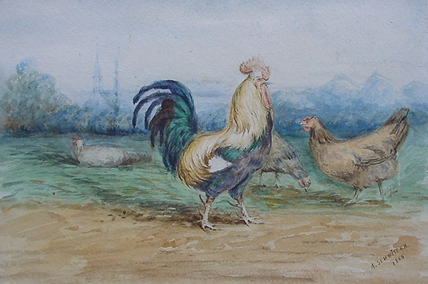 Cockerel and Chickens