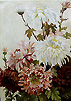 Victorian Flower Painting - Dahlias